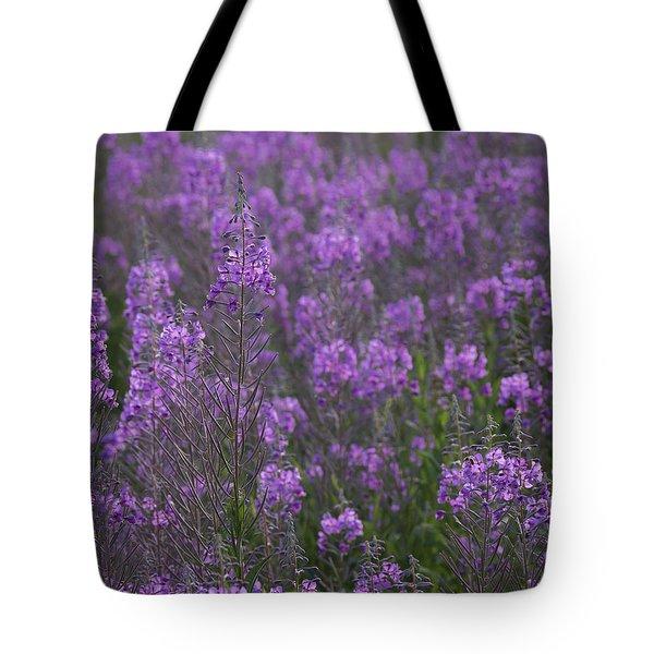 Field Of Fireweed Tote Bag