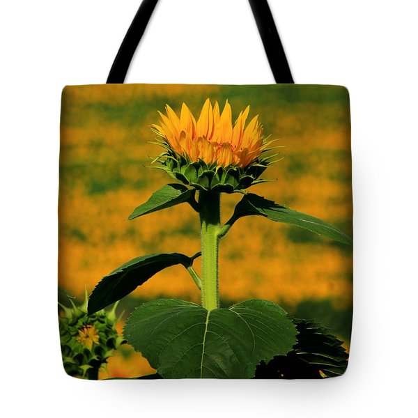 Tote Bag featuring the photograph Field Of Gold by Chris Berry