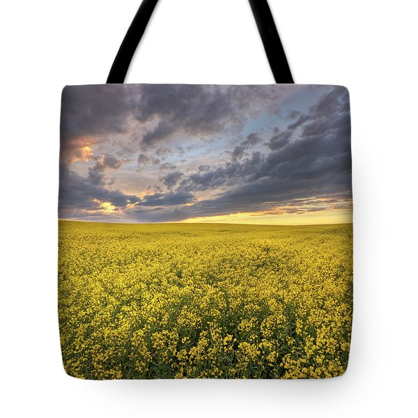 Field Of Gold Tote Bag by Dan Jurak