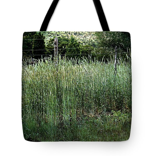 Tote Bag featuring the photograph Field Of Grass by Beauty For God