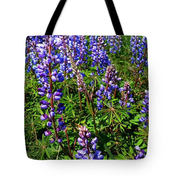 Field Of Lupine's Tote Bag