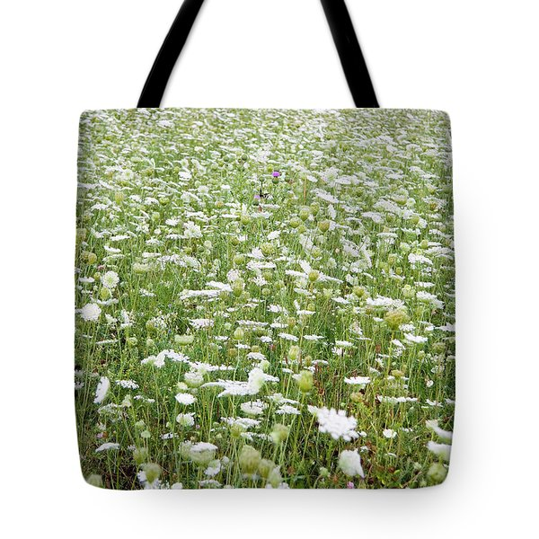 Field Of Queen Annes Lace Tote Bag