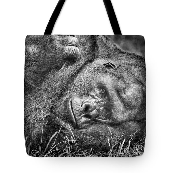 Field Of Sadness Tote Bag