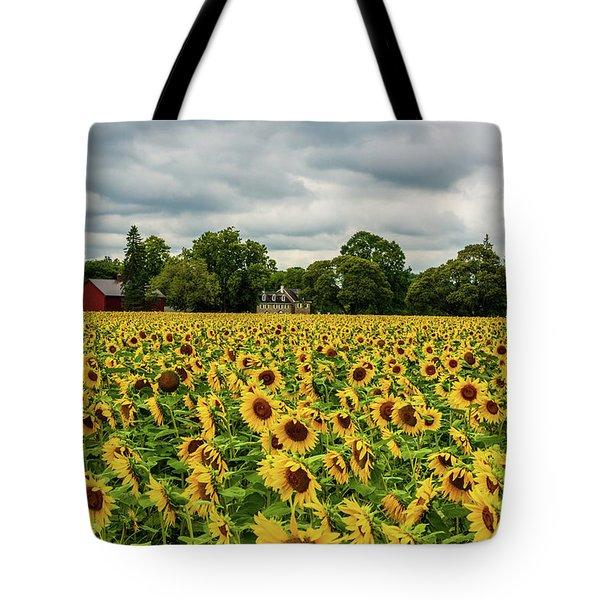 Field Of Sunshine Tote Bag