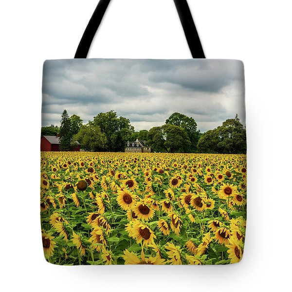Tote Bag featuring the photograph Field Of Sunshine by Louis Dallara