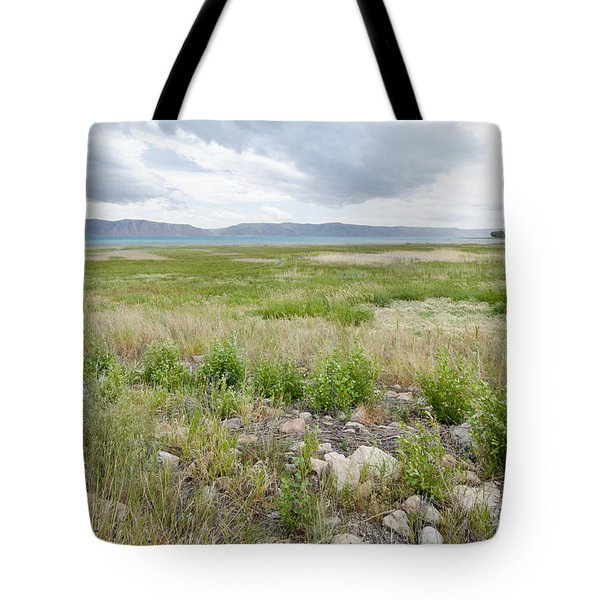 Field Of View Tote Bag