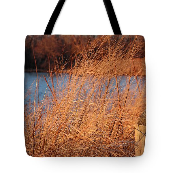 Amber Brush On The River Tote Bag