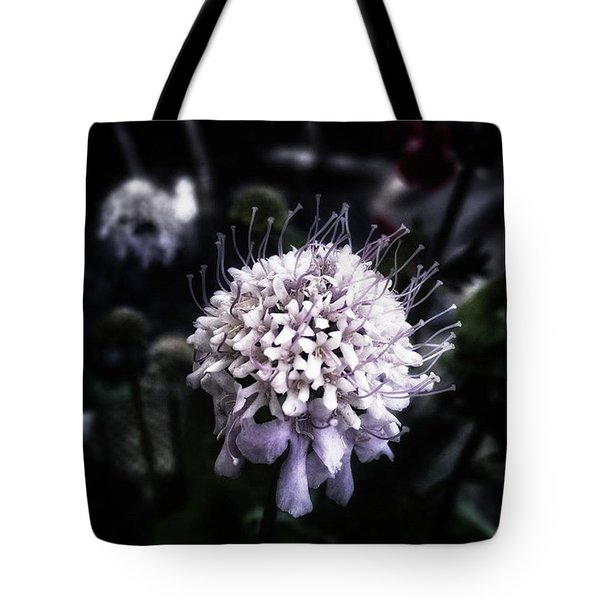 Tote Bag featuring the photograph Field Scabious. A Member Of The by Mr Photojimsf