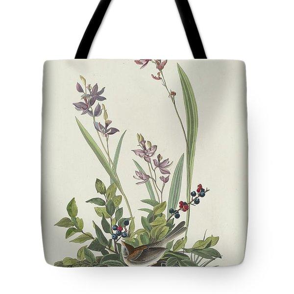 Field Sparrow Tote Bag by Rob Dreyer