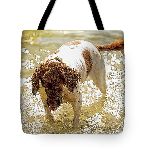 Tote Bag featuring the photograph Field Springer Spaniel by Constantine Gregory