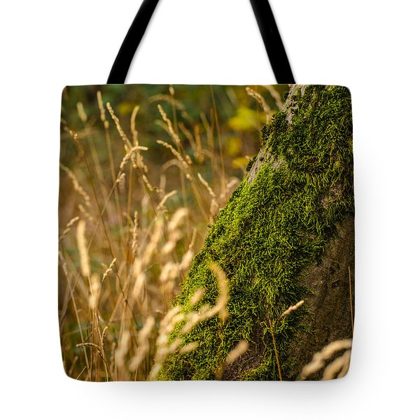 Fields Of Gold Tote Bag by Daniel Precht