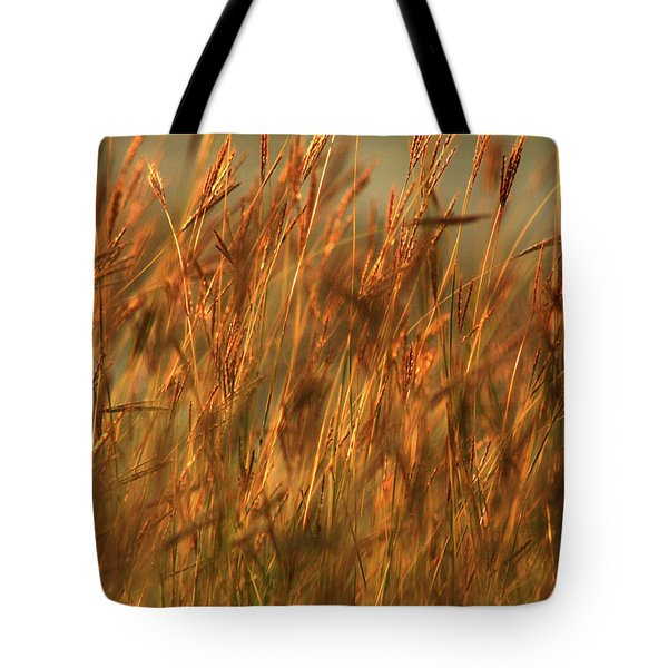 Fields Of Golden Grains Tote Bag