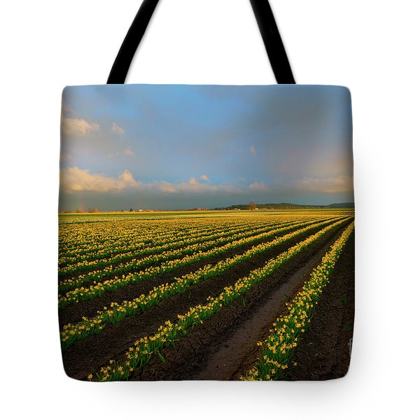 Tote Bag featuring the photograph Fields Of Yellow by Mike Dawson
