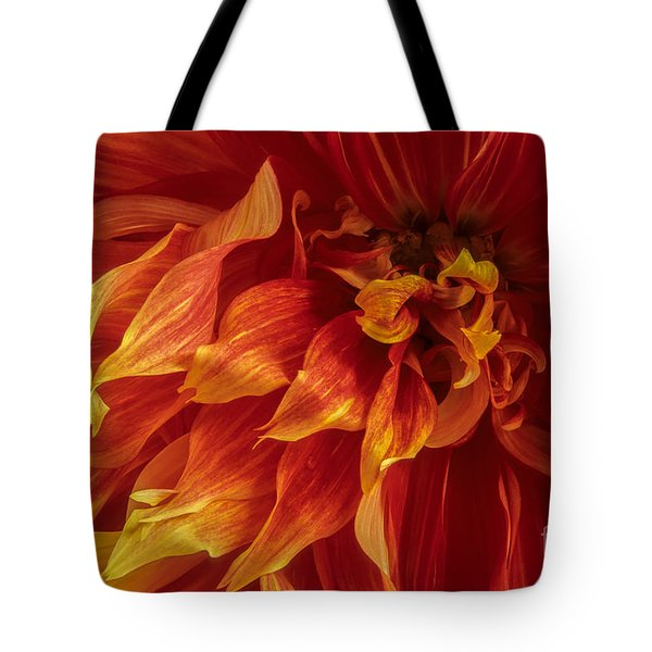 Fiery Dahlia Tote Bag by Chris Scroggins