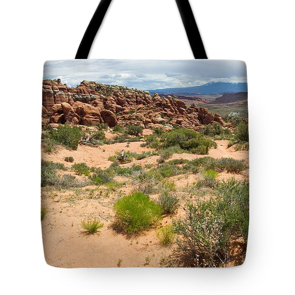 Tote Bag featuring the photograph Fiery Furnace Landscape by Aaron Spong