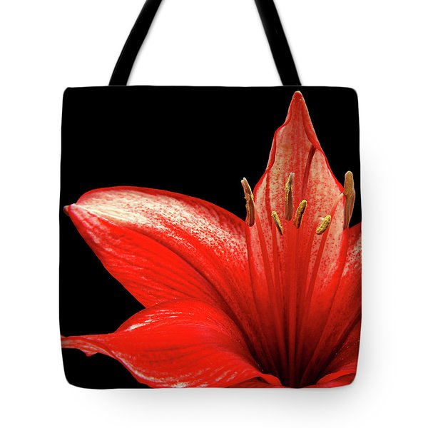 Tote Bag featuring the photograph Fiery Red by Judy Vincent