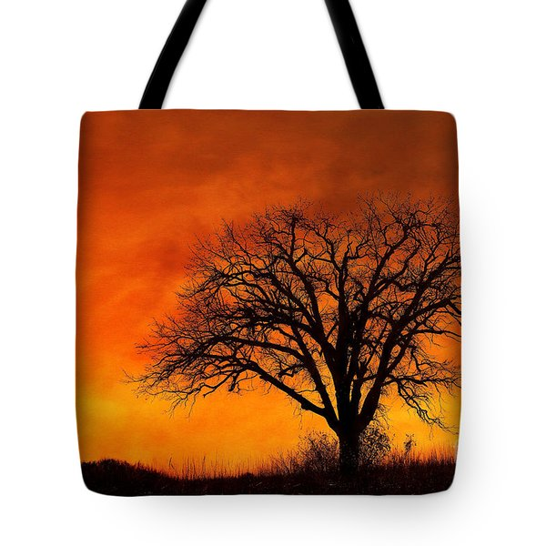 Fiery Treescape Tote Bag by Clare VanderVeen
