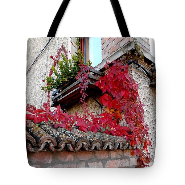 Fifty Shades Of Autumn - 12. Tote Bag