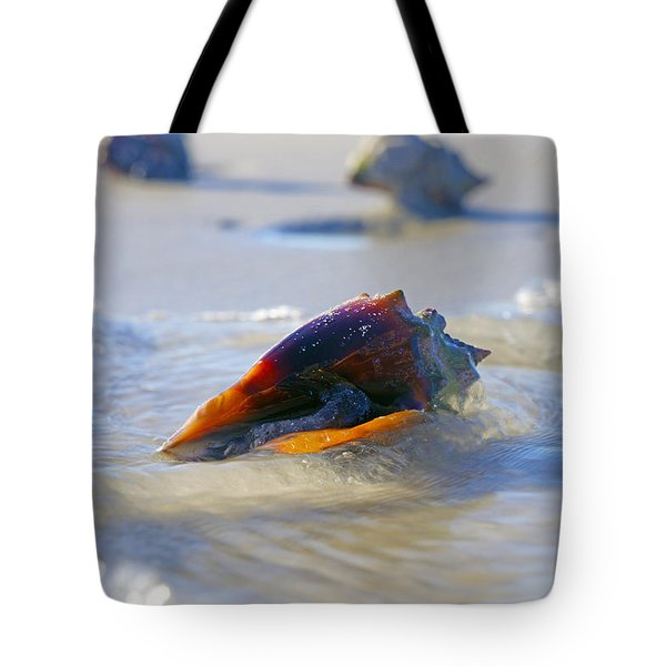 Fighting Conch On Beach Tote Bag by Robb Stan