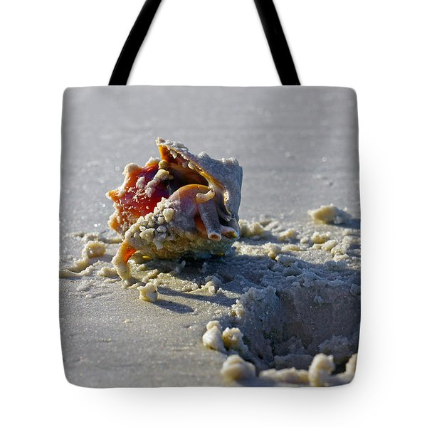 Fighting Conch On The Beach Tote Bag by Robb Stan