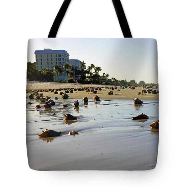 Fighting Conchs At Lowdermilk Park Beach In Naples, Fl  Tote Bag