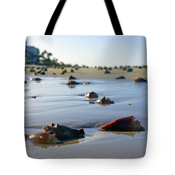 Fighting Conchs On The Beach In Naples, Fl Tote Bag