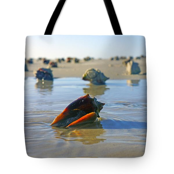 Fighting Conchs On The Sandbar Tote Bag by Robb Stan