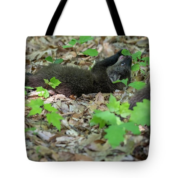Fighting With A Leaf Tote Bag