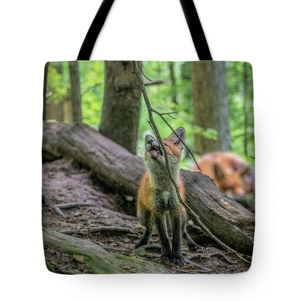 Fighting With A Limb Tote Bag