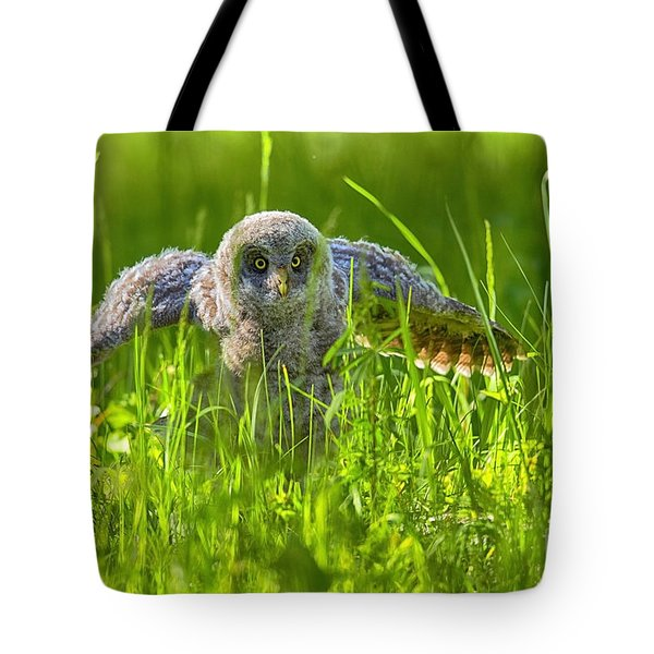 Tote Bag featuring the photograph Figuring It Out by Aaron Whittemore