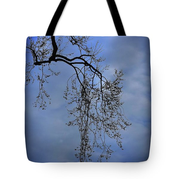 Tote Bag featuring the photograph Filigree From On High by Skip Willits