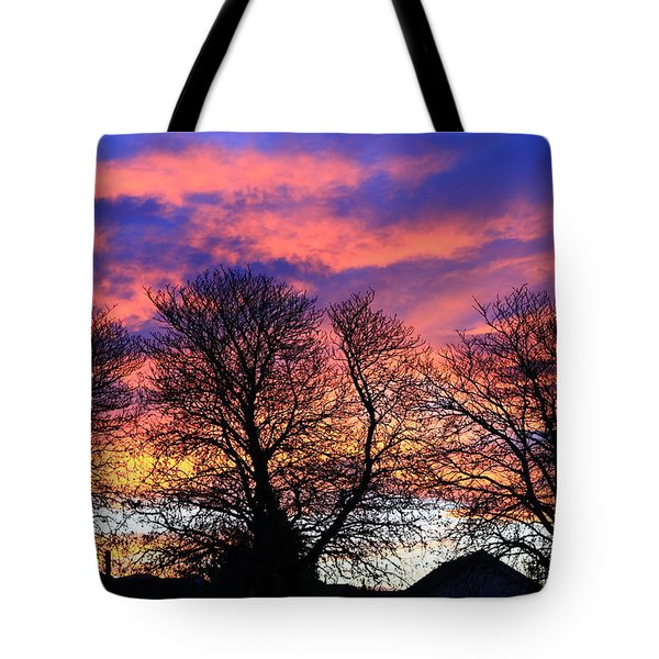 Tote Bag featuring the painting Filigree Sunset by Nareeta Martin