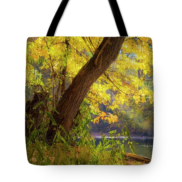 Filtered Light 2 Tote Bag