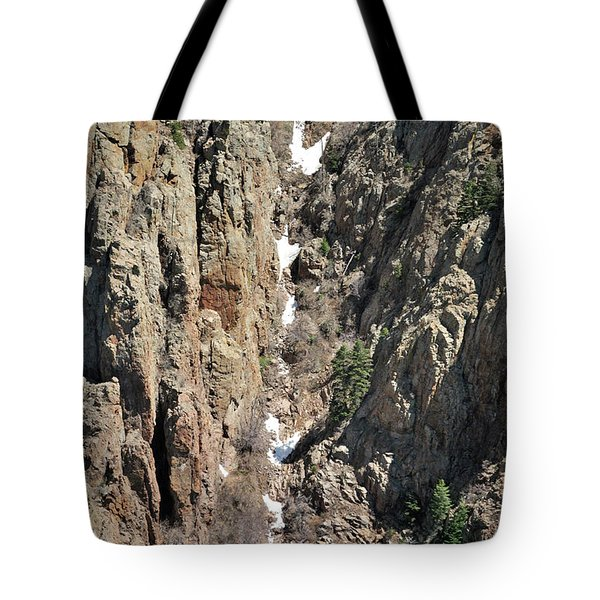 Final Traces Of Snow Tote Bag