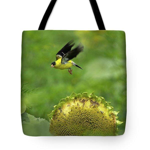 Finch Flight Tote Bag