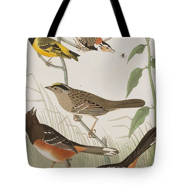 Finches Tote Bag by John James Audubon