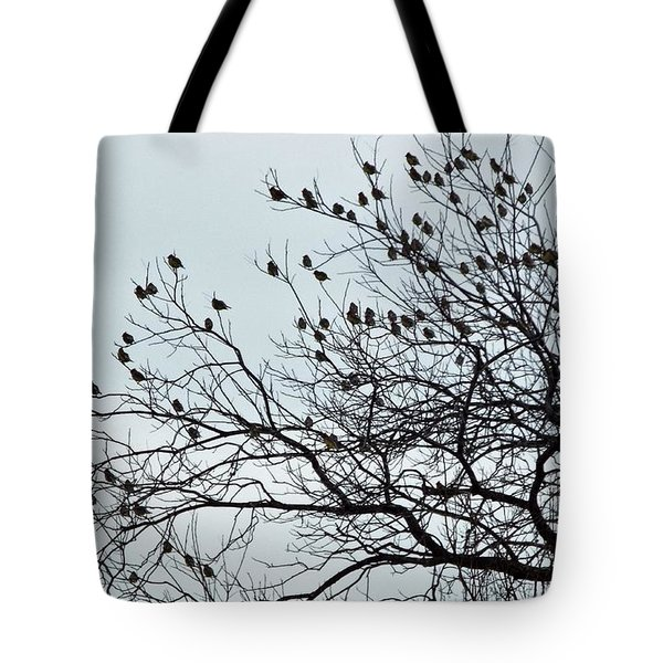 Finches To The Wind Tote Bag