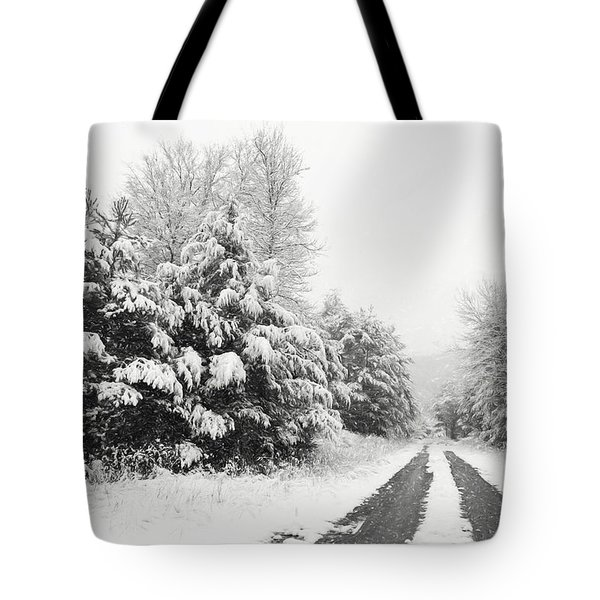 Tote Bag featuring the photograph Find A Pretty Road by Lori Deiter