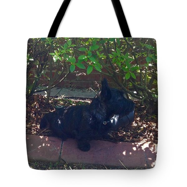 Finding Shade Tote Bag by Diane Ferguson