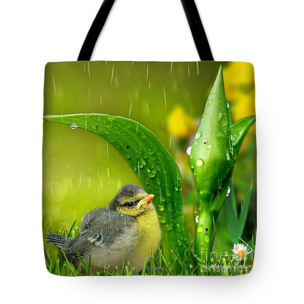 Finding Shelter Tote Bag by Morag Bates