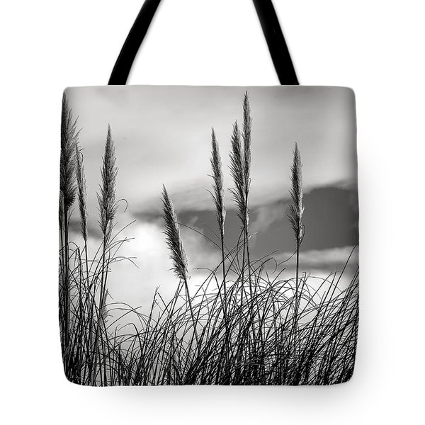 Fine Art Black And White-188 Tote Bag