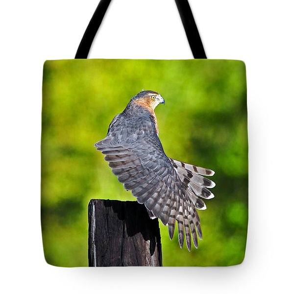 Tote Bag featuring the photograph Fine Feathers by Al Powell Photography USA