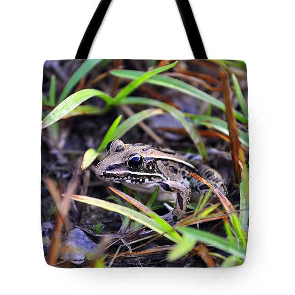 Tote Bag featuring the photograph Fine Frog by Al Powell Photography USA