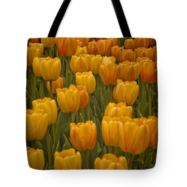 Fine Lines In Yellow Tulips Tote Bag