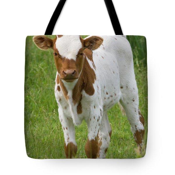 Fine Looking Longhorn Calf Tote Bag