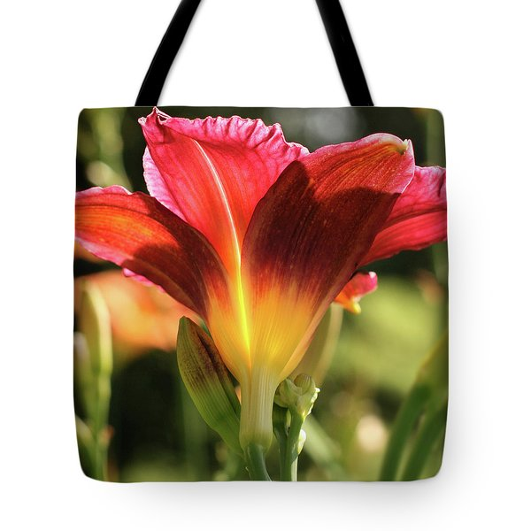 Fine Wine Daylily In Sun Tote Bag by Denise Beverly