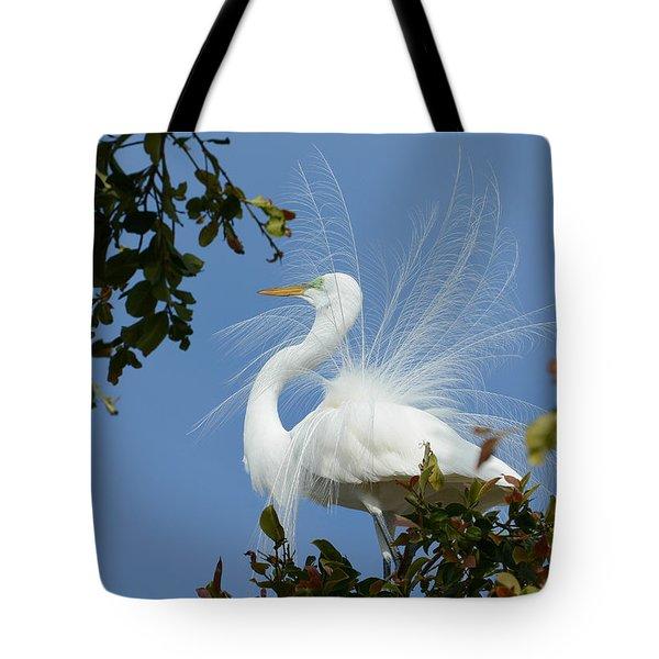 Finery Tote Bag by Fraida Gutovich