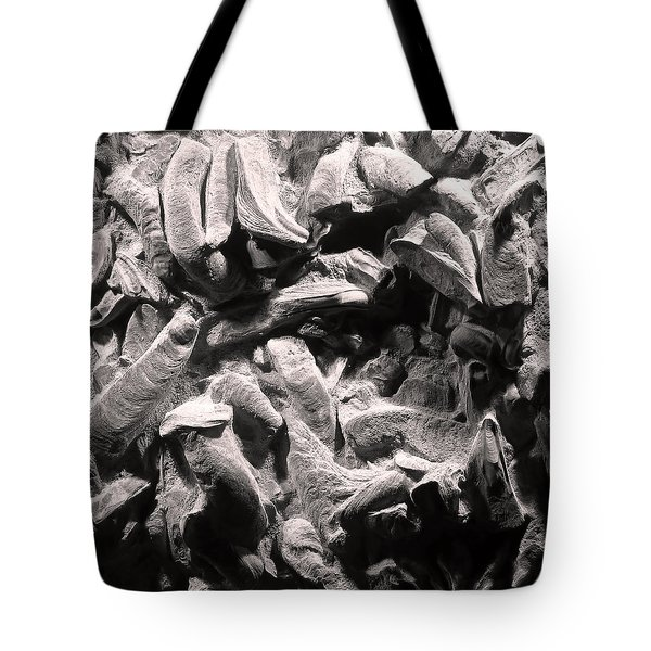Tote Bag featuring the photograph Fingers Of Time - Giant Oyster Shell Fossils by Menega Sabidussi