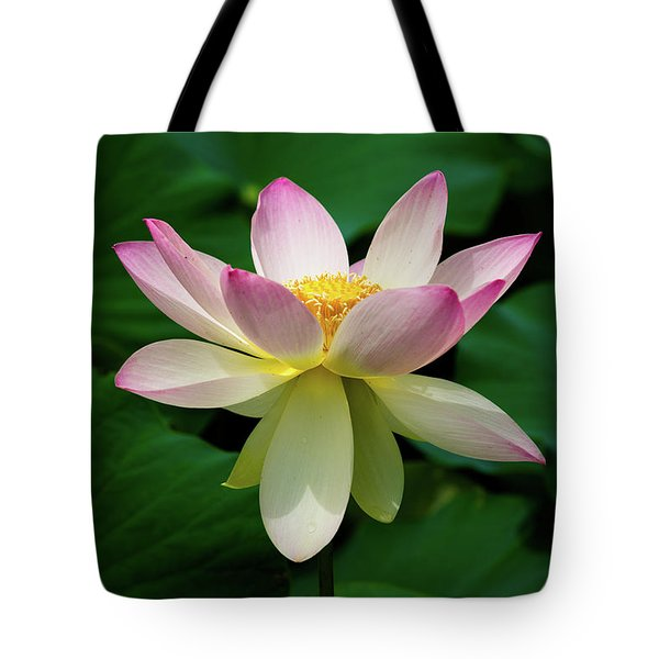 Tote Bag featuring the photograph Finishing Strong by Dennis Dame