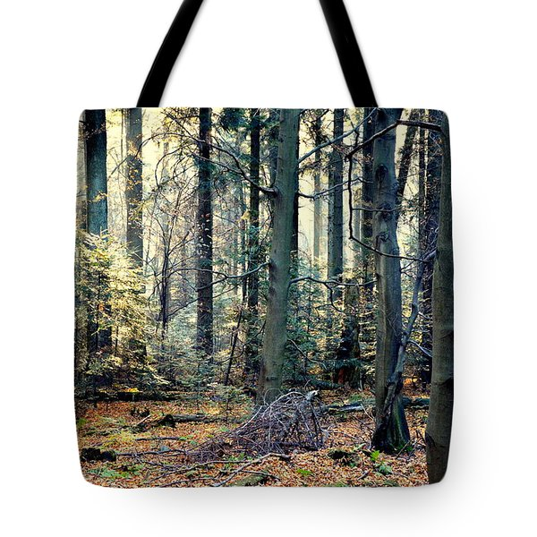 Fir Forest-2 Tote Bag by Henryk Gorecki